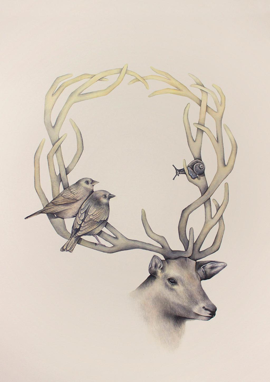 Q Deer by eriksherman