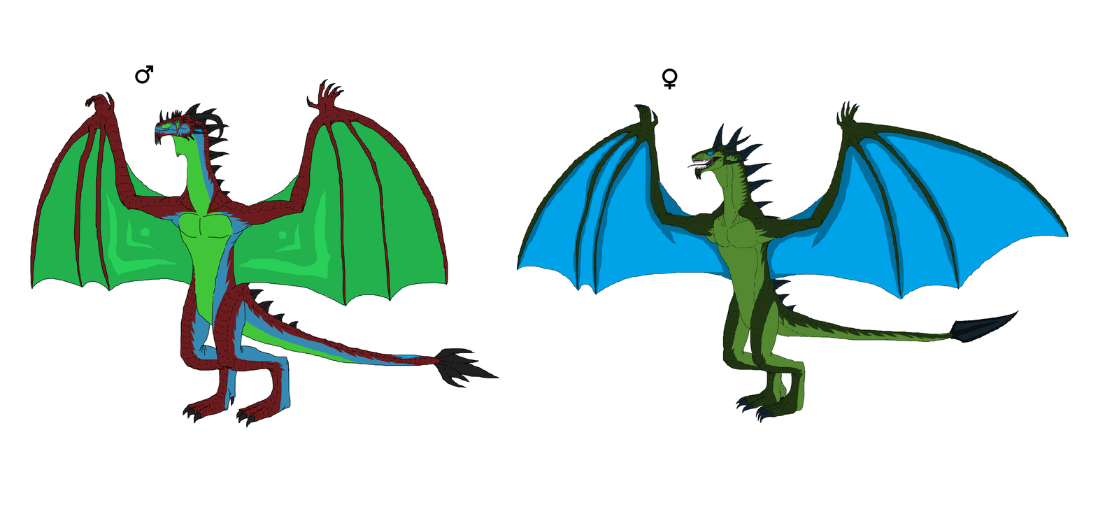 Male And Female Leiran comparision. by Redspets