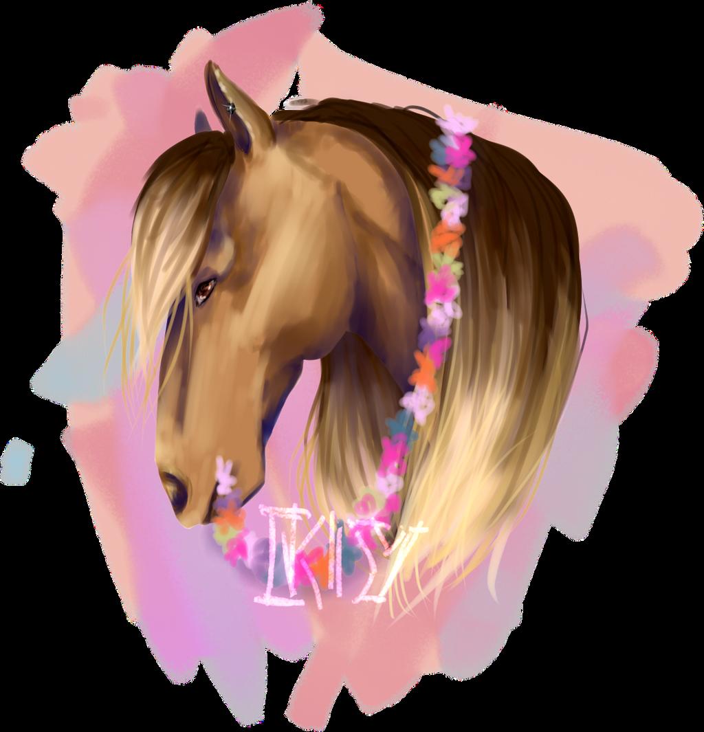 katara11yue's Profile Picture