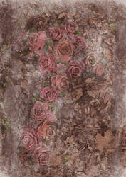 Roses unrestricted by DivsM-stock