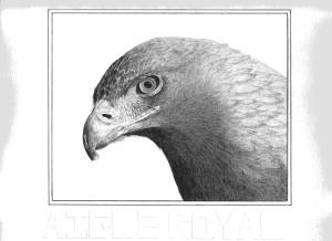 elgiaelgia's Profile Picture