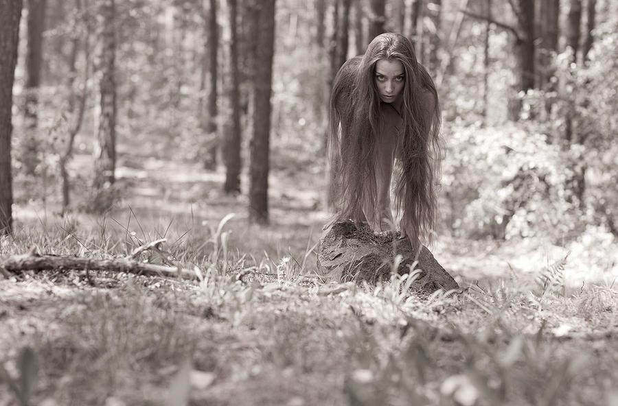 sepia fern by LadyMartist