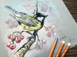 Great Tit in Pastel Pencil by Lineke-Lijn