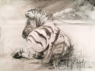Zebra in charcoal landscape by Lineke-Lijn