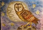 Full moon in Owl land