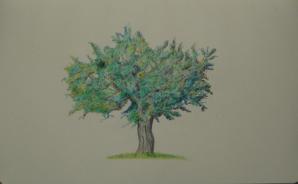 Tree by MisaelRubio