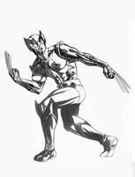 Classic Wolverine by DrewEdwardJohnson
