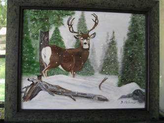 Winter Deer by barbara-jean