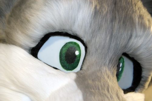 Wolf-Cat Teaser by Tsebresos