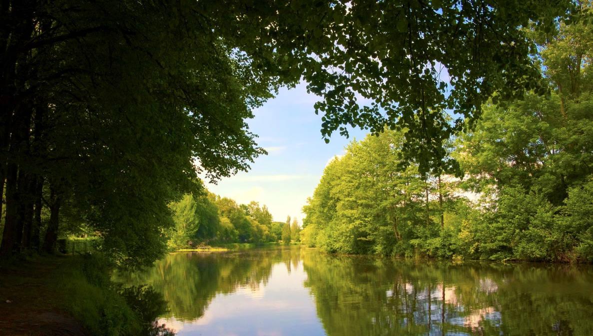 River Regge by janfoto