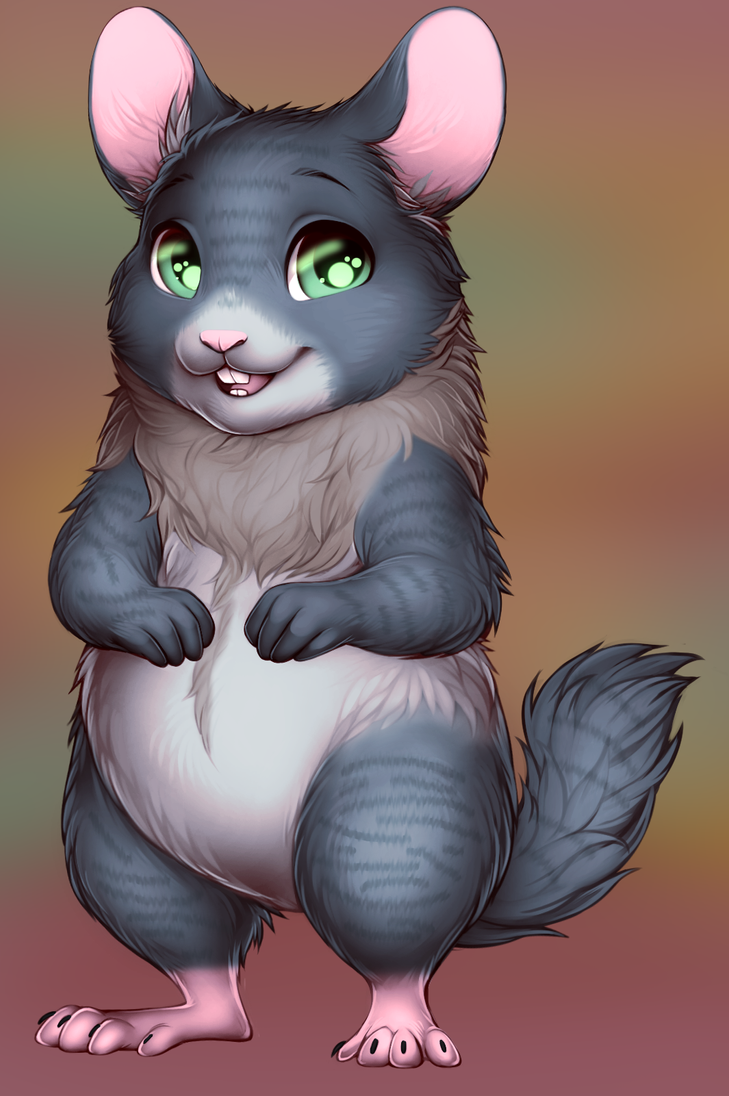 Chinchilla by WibbleyWobbleys