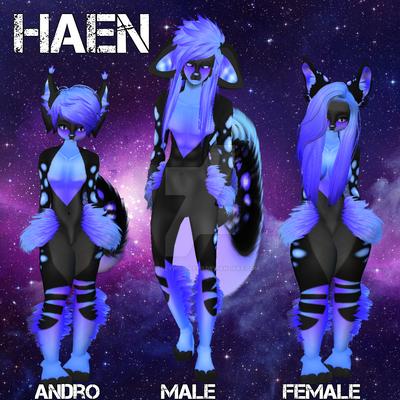 Haen Display by WibbleyWobbleys