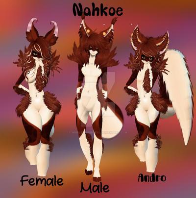 Nahkoe Display by WibbleyWobbleys