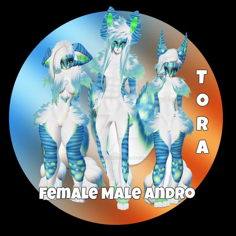 Tora Display by WibbleyWobbleys