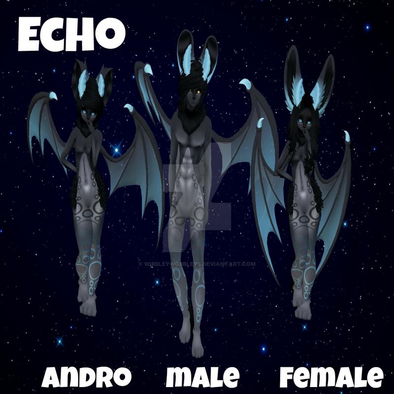 Echo Display by WibbleyWobbleys