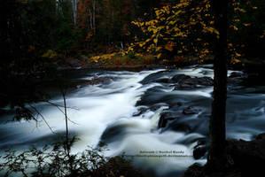 Autumn Falls by 8TwilightAngel8