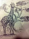 Tall as my giraffes