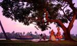 Kerela backwaters