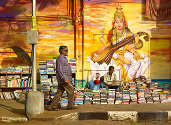 Divine Irony - Saraswati