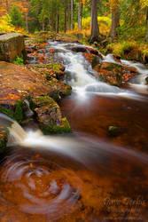 Autumn Energy by Dave-Derbis