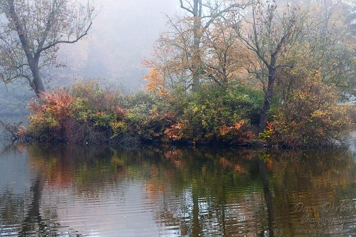 Thinking of Autumn by Dave-Derbis