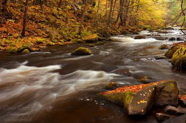 Bodetal Autumn by Dave-Derbis