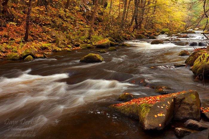 Bodetal Autumn by Dave-Derbis