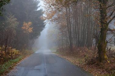 Foggy Road by Dave-Derbis