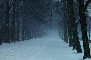 Clara Zetkin Park Winter by Dave-Derbis