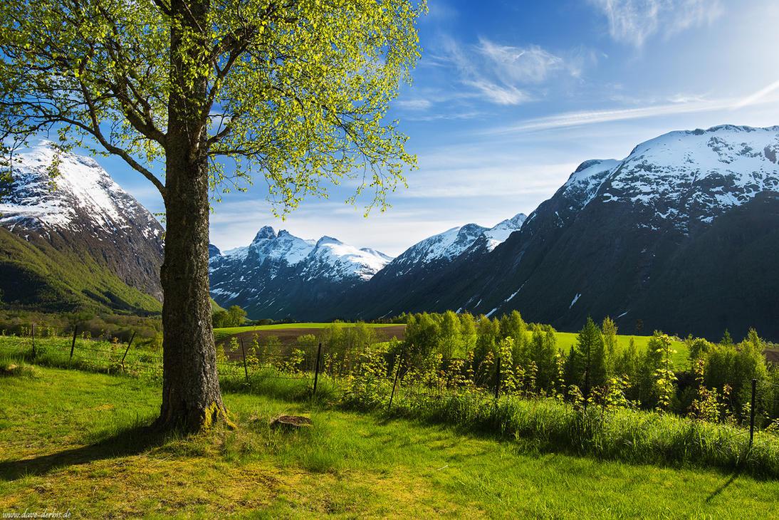 Romsdalen Postcard by Dave-Derbis