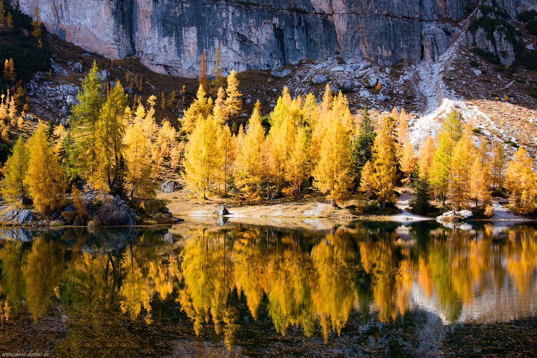 IMG:http://pre09.deviantart.net/5415/th/pre/f/2015/324/c/1/golden_october_reflection_by_dave_derbis-d9hanku.jpg
