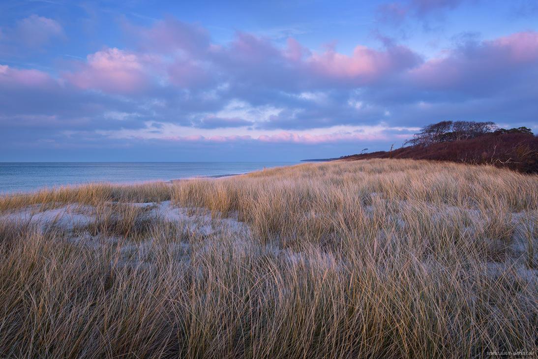 Windswept by Dave-Derbis