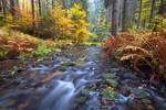 Khaa Valley Autumn