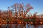 Hinterland Winter Sunset