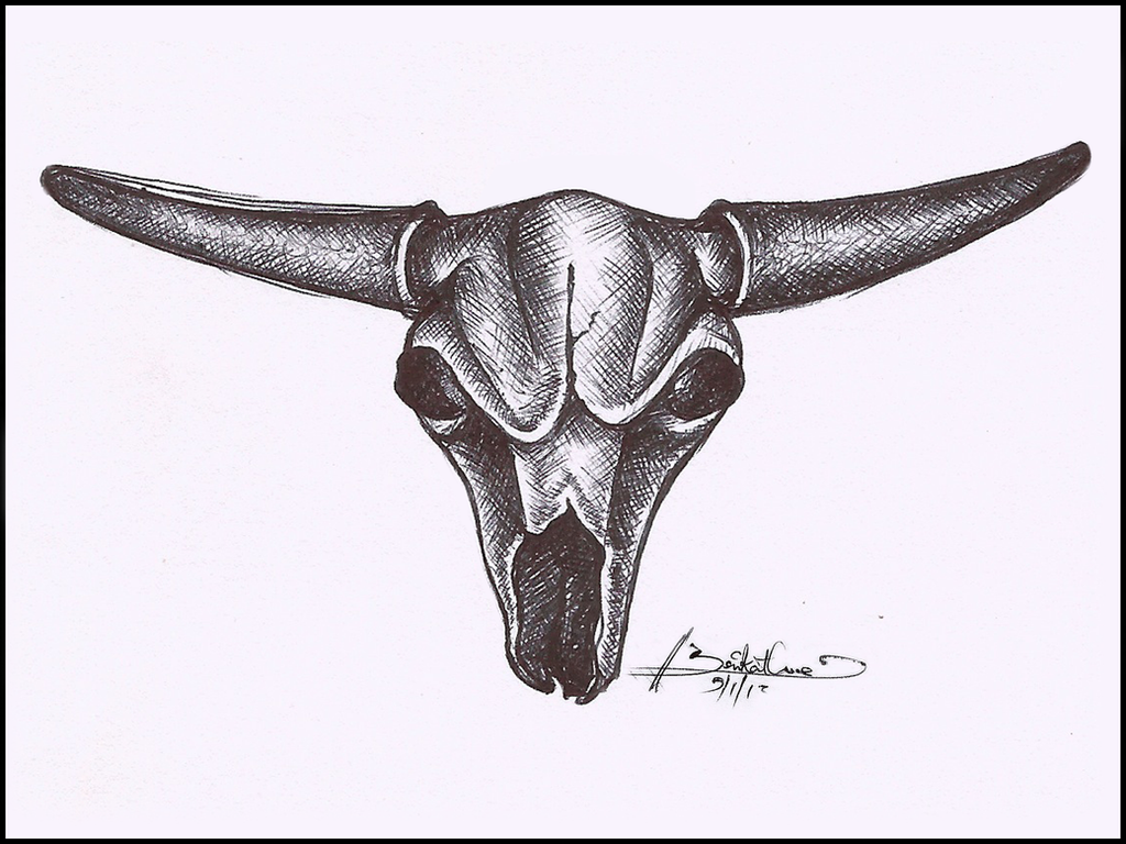 how to draw a cow skull