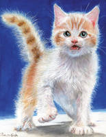 Kitty. by SpikedMcGrath