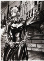 Batgirl by ShawnVanBriesen