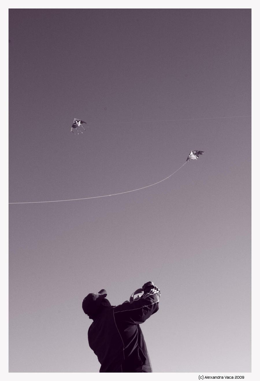 Summer time: Kite by ateneita