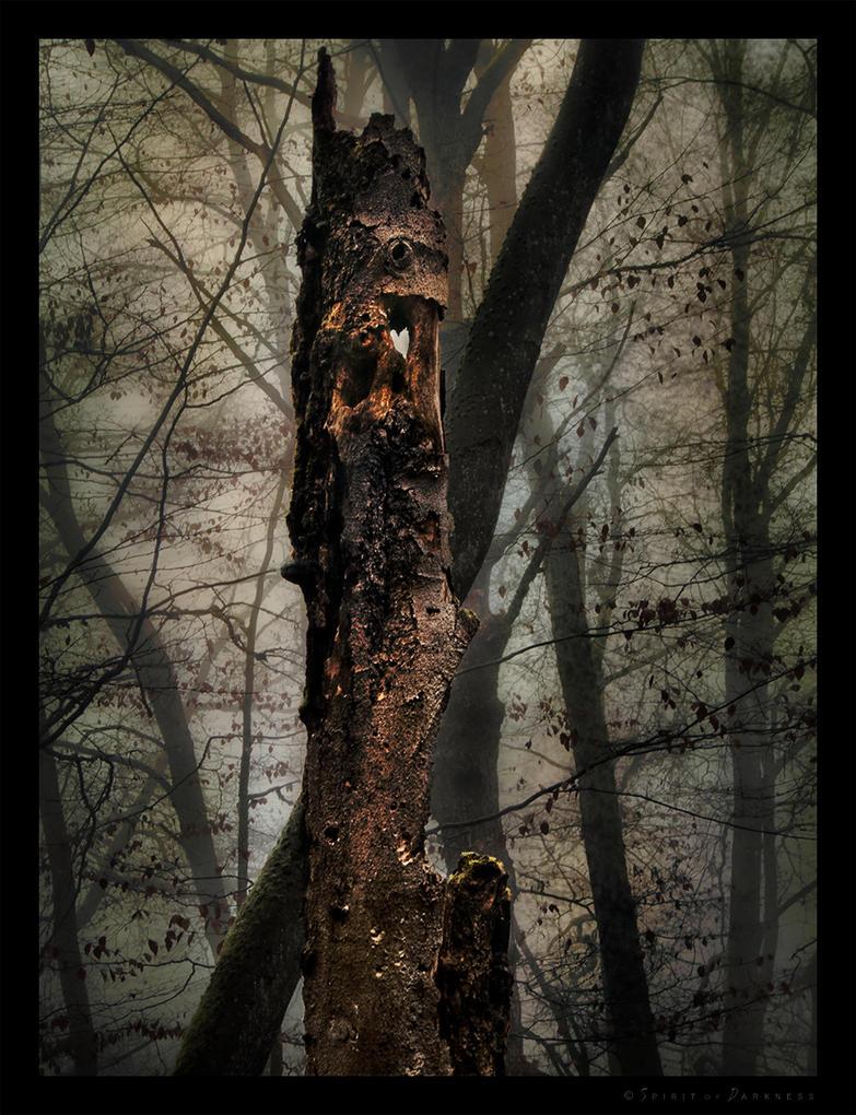 Forest Spirit by Spiritofdarkness