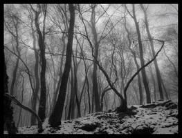 Black Snow by Spiritofdarkness