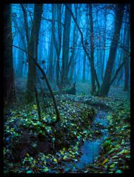 Secret Creek by Spiritofdarkness