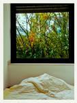 View through Window v2 by Spiritofdarkness