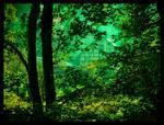 Deep in the  Forest by Spiritofdarkness