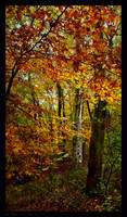 Autumns Cover