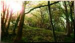 Sun Hill by Spiritofdarkness