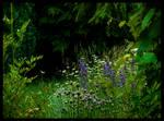 Uncut Garden by Spiritofdarkness