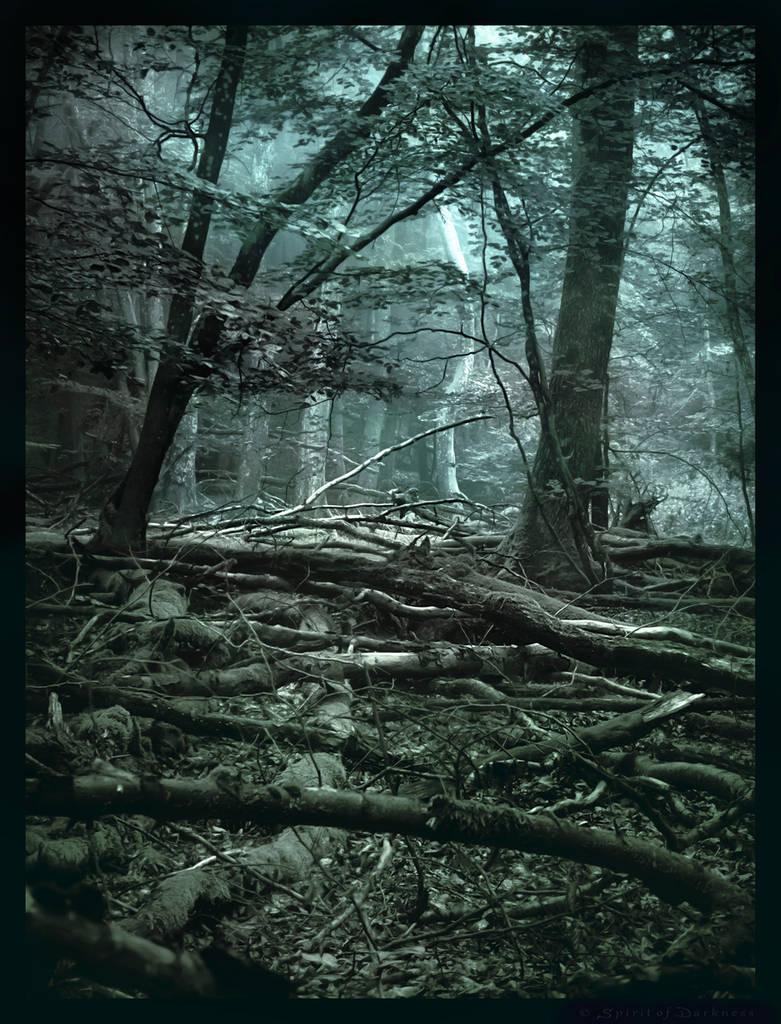 Carabosse Forest II