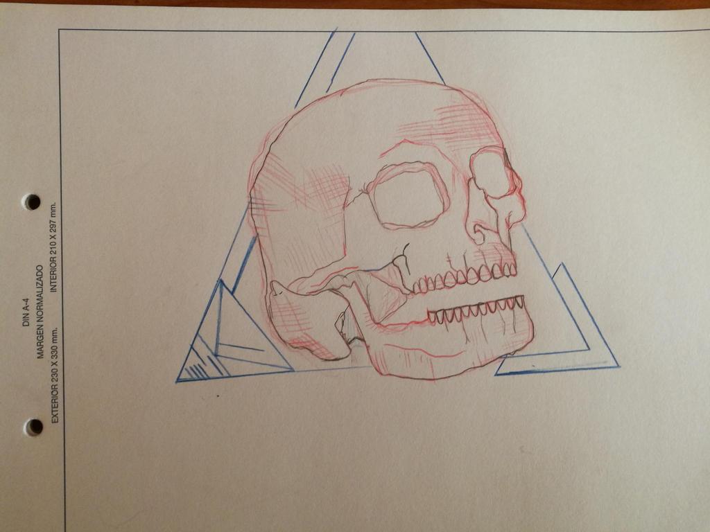 skull  by enagur