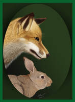 Young fox N Rabbit by niveky