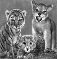 Cubs by aragornbird